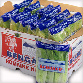 Bengard Products